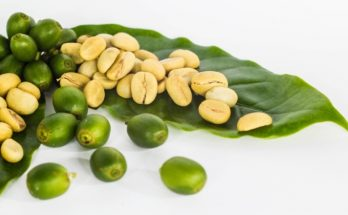Why Green Coffee Beans is Best for Bosst Your Metabolism